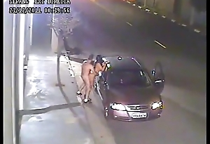 Brazilian couple breaking the law